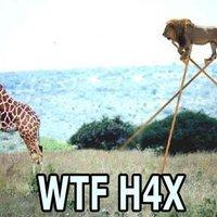 WTF H4X