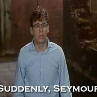 Suddenly Seymour