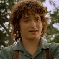 Frodo Plot Hole