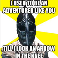 I used to be an adventurer like you, then I took an arrow in the knee.