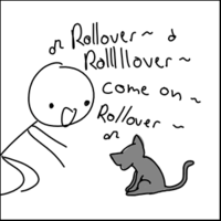 Roll Over Cat