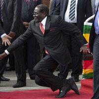 Robert Mugabe Fall
