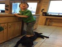 Sarah Palin Spars with PETA Over Dog Photo
