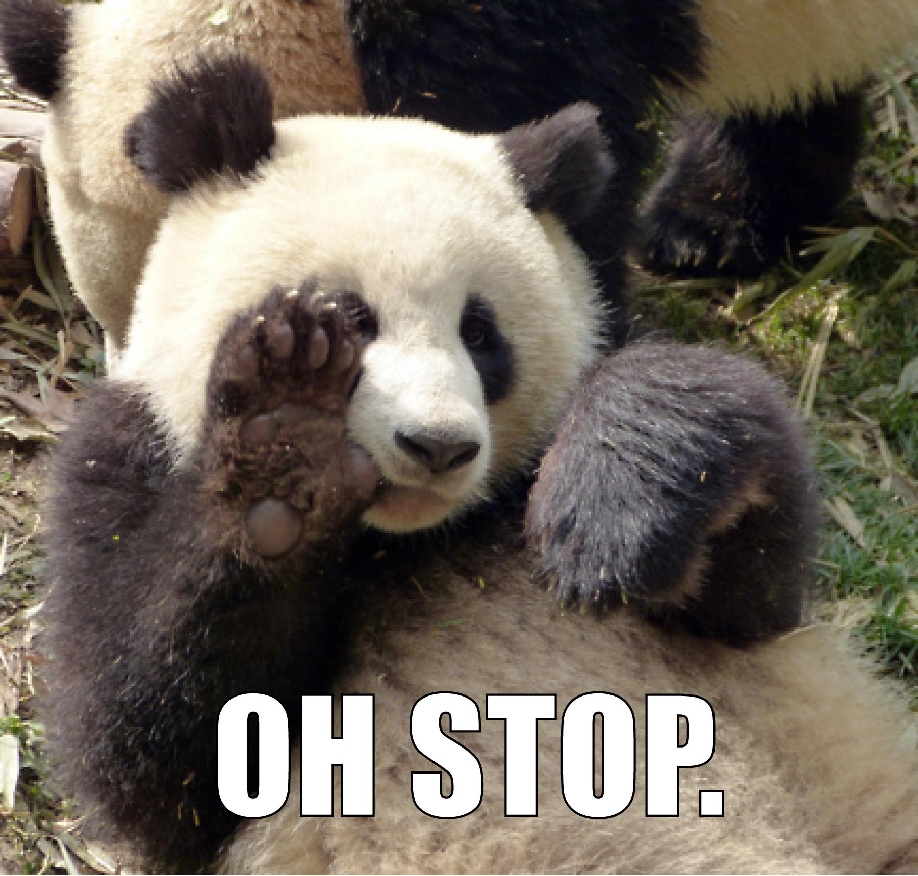 Funny panda memes - photo#17