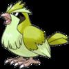 Shiny Pidgey