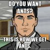 Do You Want Ants?