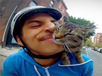 Cyclist Takes Cat on a Biking Adventure