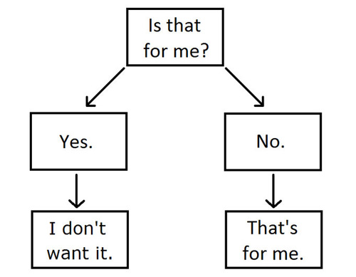 My Cat's Decision Making Tree