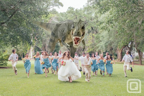 The Best Wedding Photo Ever