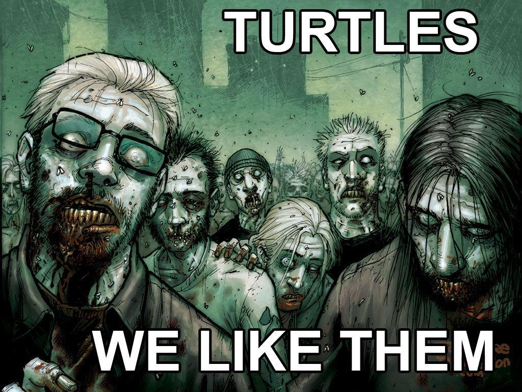 i like turtles Find great deals on ebay for i like turtles and i like turtles hoodie shop with confidence.