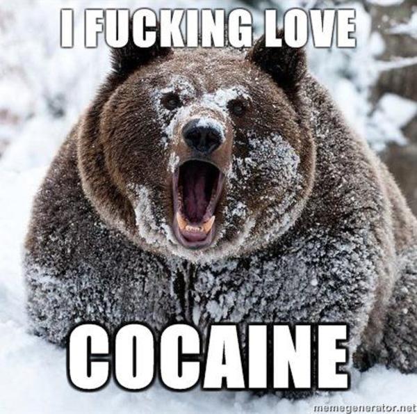 [Image: i-fucking-love-cocaine.jpg]