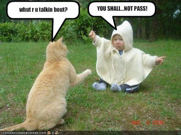 [Image - 222558] | You Shall Not Pass!!! | Know Your Meme