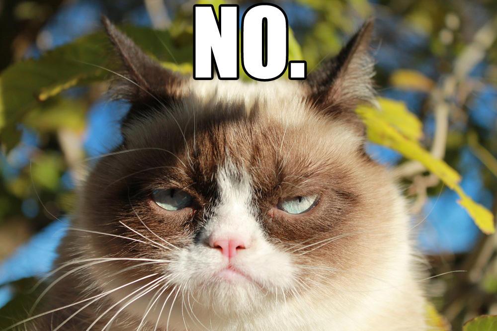 Grumpy Cat No | Grumpy Cat | Know Your Meme