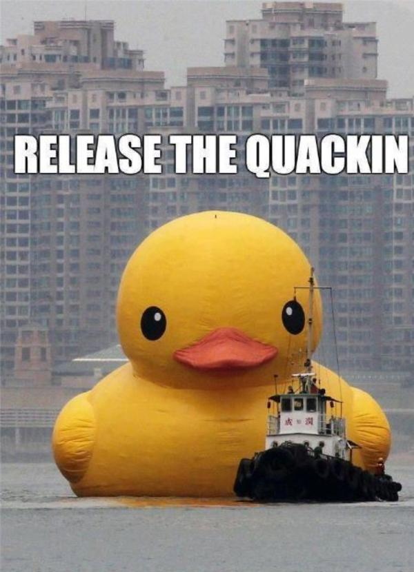 Image 556215 Big Yellow Duck Know Your Meme