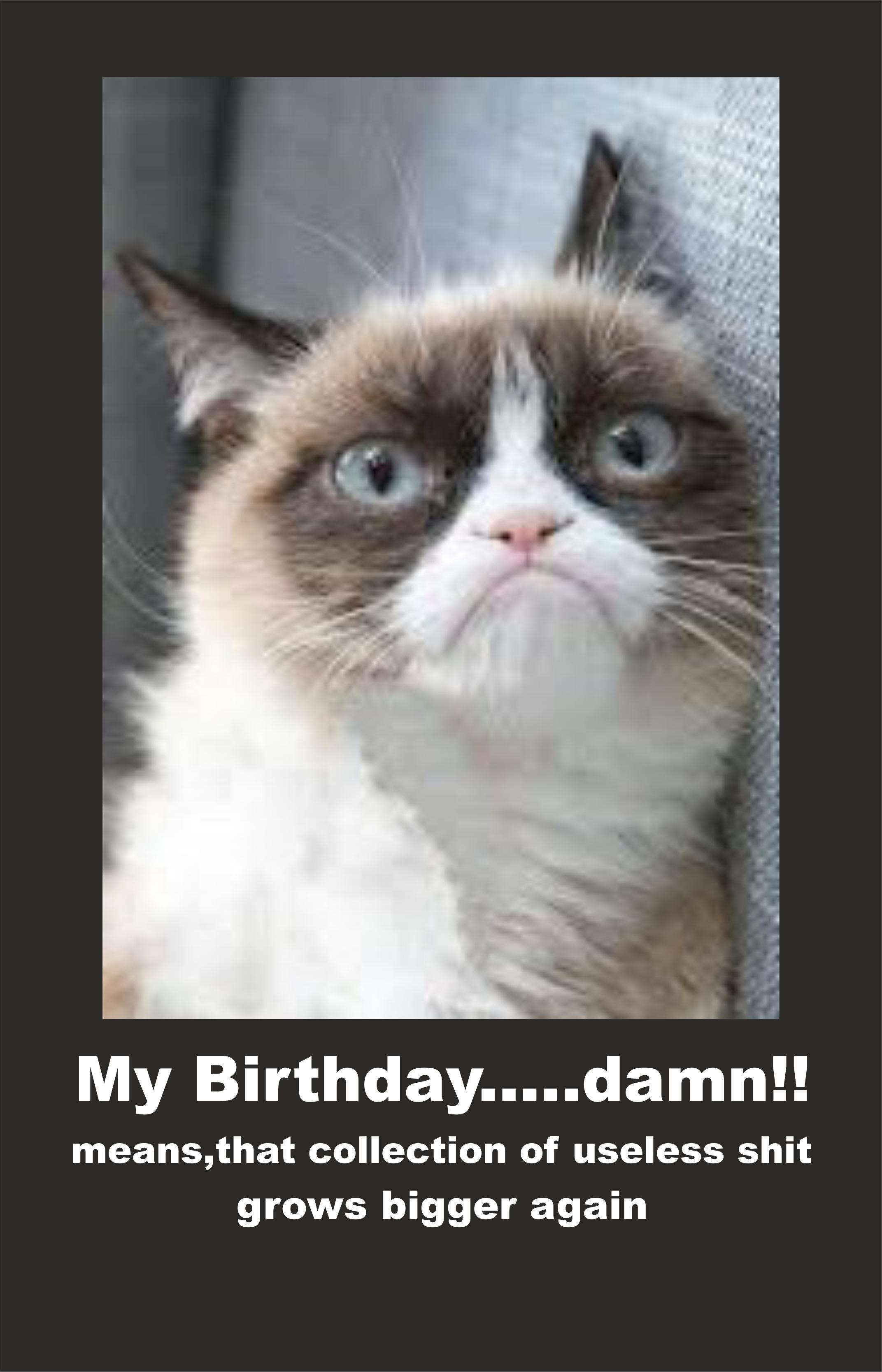 Image - 614122] | Grumpy Cat | Know Your Meme