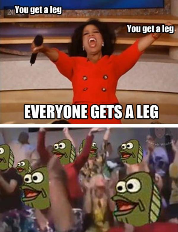 You Get a Leg   Oprah You Get a Car   Know Your Meme