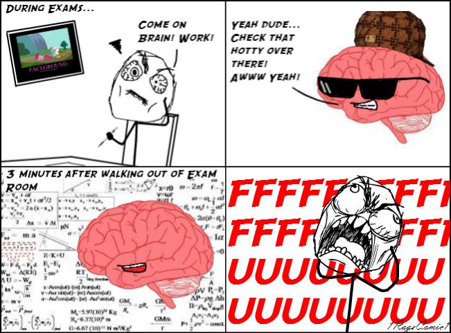 Scumbag Brain | Scumbag Brain | - 348.1KB