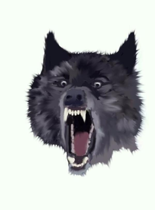 Image 772069 Insanity Wolf Know Your Meme