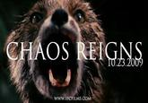 chaos reigns
