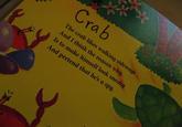 Spy Crab