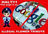 Illegal Flower Tribute (非法献花)