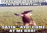 I Throw My Hands Up In The Air Sometimes Saying Ayo