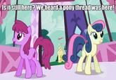 My Little Pony: Friendship is Magic