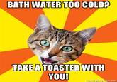 Bad Advice Cat