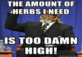 Bitch. Needs more herbs!