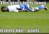 This Grass It Feels Like Pants