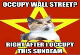 Lenin Cat