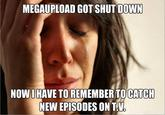 Operation Megaupload