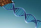 Scumbag DNA