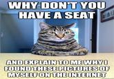 Chris Hansen Cat