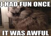 Colonel Meow