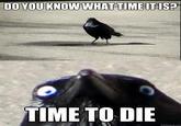 Insanity Crow