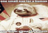 astronaut sloth meme - photo #9