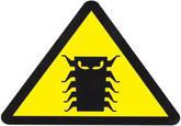 Y2K Bug