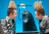 Homophobic Seal