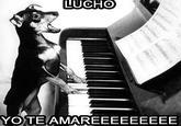 Oye Lucho, El perro del lucho