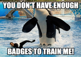 YOU DON'T HAVE ENOUGH BADGES TO TRAIN ME!