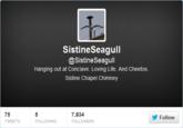 Sistine Seagull