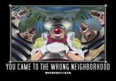 You Came to the Wrong Neighborhood