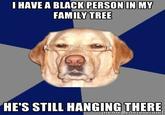 Racist Dog