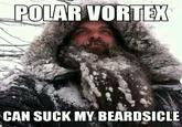 2014 North American Polar Vortex