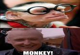 Monkey!