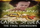 Spiders Georg