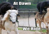 At Dawn We Ride