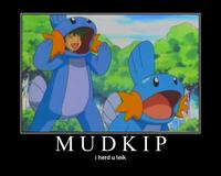 I Herd U Like Mudkips