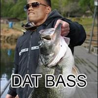 Datbass.jpg
